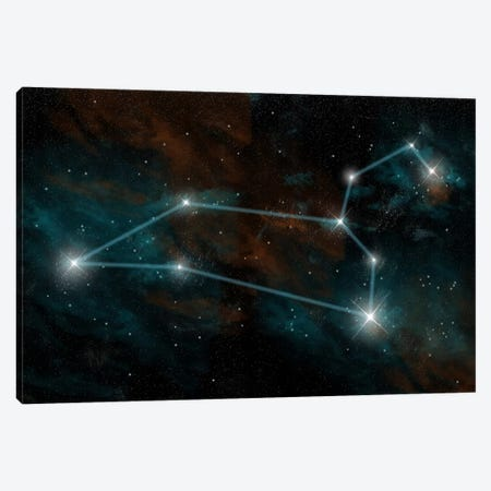 The Constellation Leo The Lion Canvas Print #TRK1252} by Marc Ward Canvas Print