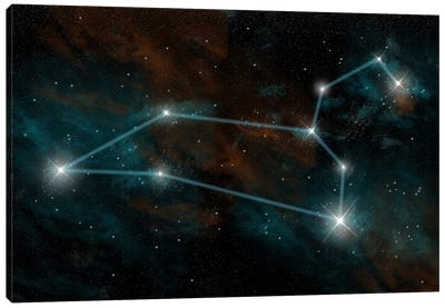 The Constellation Leo The Lion Canvas Art Print