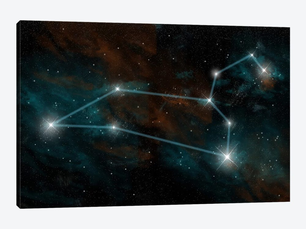 The Constellation Leo The Lion by Marc Ward 1-piece Canvas Print