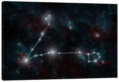 The Constellation Pisces The Fish Canvas Art Print