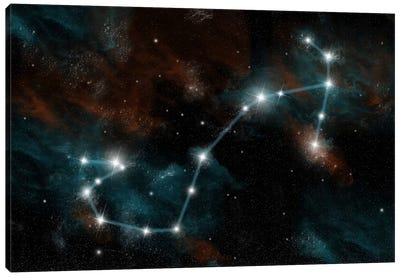 The Constellation Scorpio The Scorpion Canvas Art Print