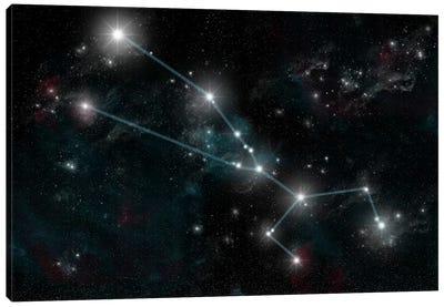 The Constellation Taurus The Bull Canvas Art Print