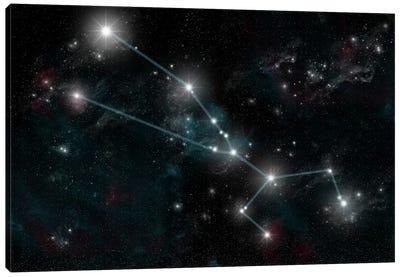 The Constellation Taurus The Bull Canvas Art Print
