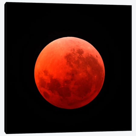 Lunar Eclipse Taken On April 15, 2014 Canvas Print #TRK1267} by Michael Miller Canvas Print