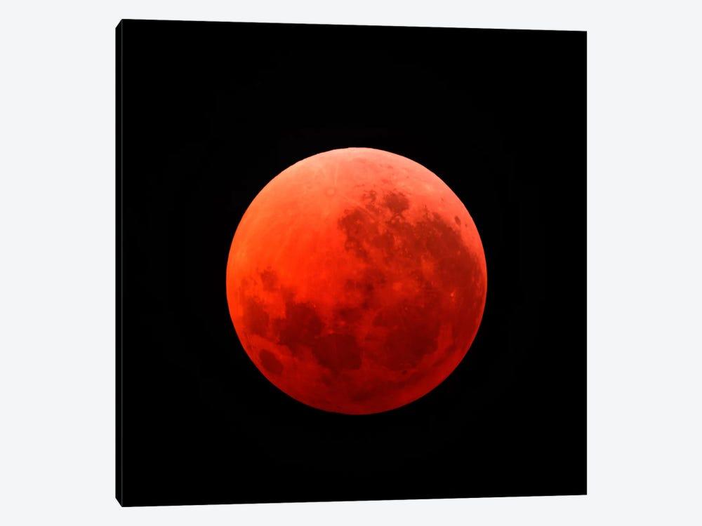 Lunar Eclipse Taken On April 15, 2014 by Michael Miller 1-piece Canvas Art Print
