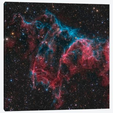 The Bat Nebula (NGC 6995) Canvas Print #TRK1268} by Michael Miller Canvas Artwork