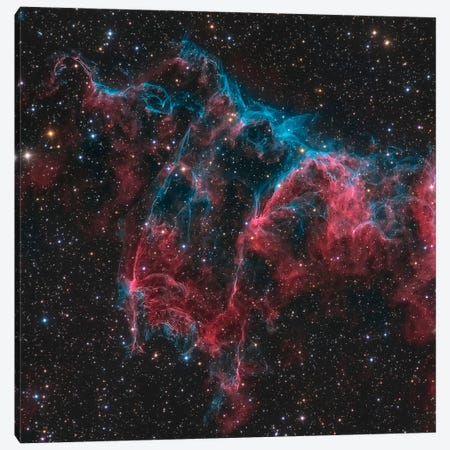 The Bat Nebula (NGC 6995) Canvas Print #TRK1268} by Michael Miller Canvas Artwork