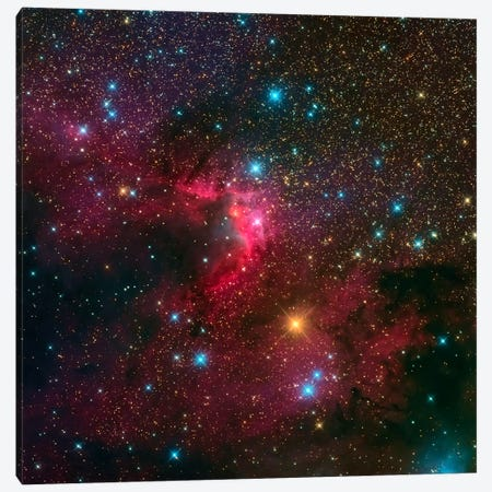The Cave Nebula (Sh2-155) Canvas Print #TRK1269} by Michael Miller Canvas Art