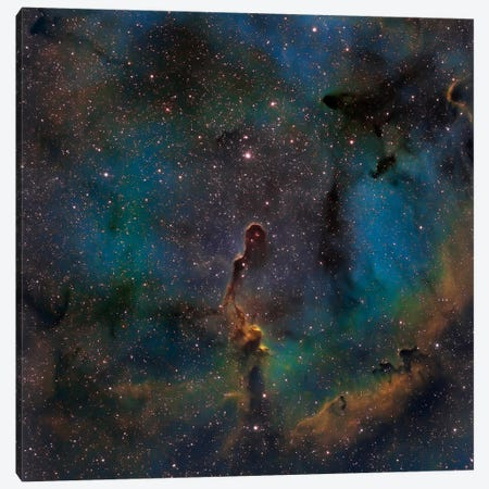 The Elephant Trunk Nebula (IC 1396) Canvas Print #TRK1270} by Michael Miller Canvas Print