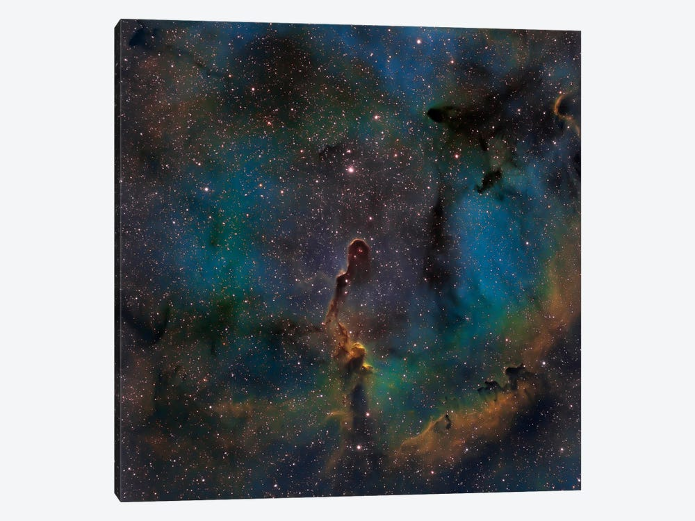The Elephant Trunk Nebula (IC 1396) by Michael Miller 1-piece Canvas Print