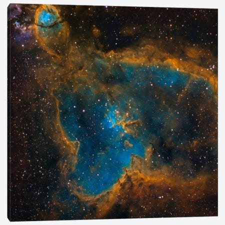 The Heart Nebula (IC 1805) Canvas Print #TRK1272} by Michael Miller Canvas Print