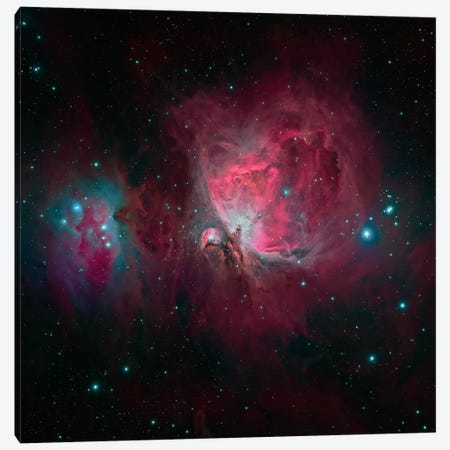 The Orion Nebula (M42) Canvas Print #TRK1274} by Michael Miller Canvas Art