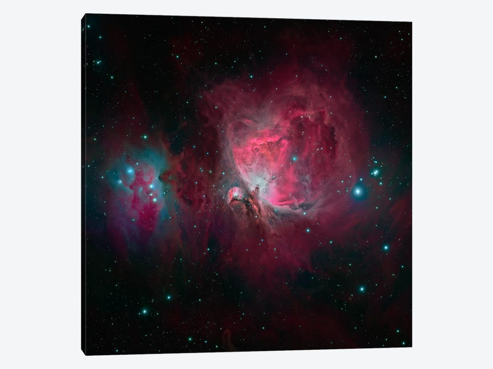 The Orion Nebula (M42) by Michael Miller 1-piece Art Print
