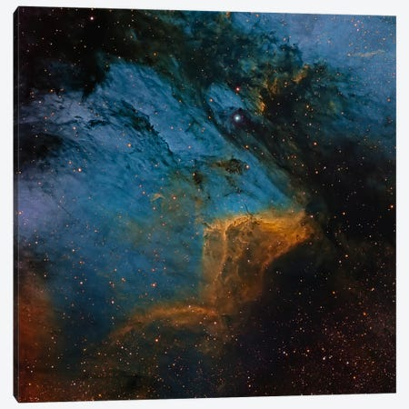 The Pelican Nebula, An H II Region In The Constellation Cygnus Canvas Print #TRK1275} by Michael Miller Canvas Artwork