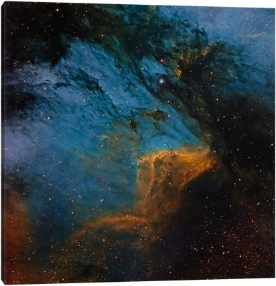The Pelican Nebula, An H II Region In The Constellation Cygnus Canvas Art Print