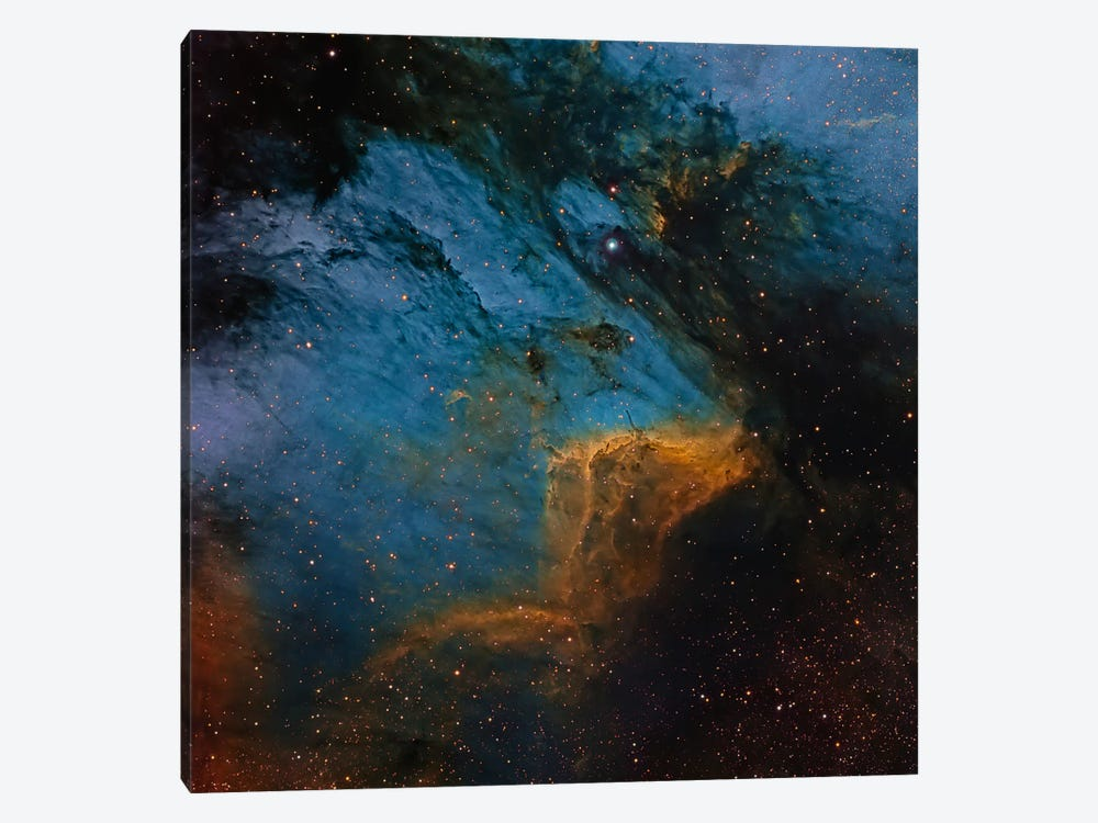 The Pelican Nebula, An H II Region In The Constellation Cygnus by Michael Miller 1-piece Canvas Artwork