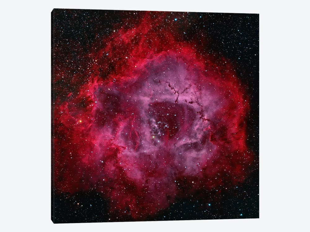 The Rosette Nebula by Michael Miller 1-piece Canvas Print
