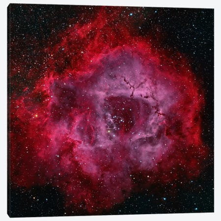 The Rosette Nebula Canvas Print #TRK1276} by Michael Miller Canvas Artwork
