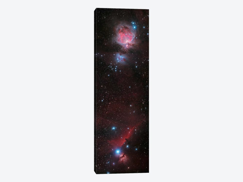 Mosaic Of Orion Nebula And Horsehead Nebula by Philip Hart 1-piece Canvas Artwork