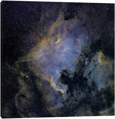 The North America Nebula And The Pelican Nebula In The Constellation Cygnus Canvas Art Print