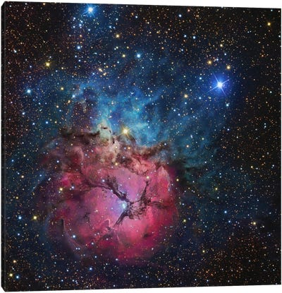 The Trifid Nebula (NGC 6514) Canvas Art Print