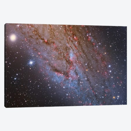 Close-Up Of The Southwest Spiral Arm Of Andromeda Galaxy (M31 ) Canvas Print #TRK1290} by Reinhold Wittich Art Print