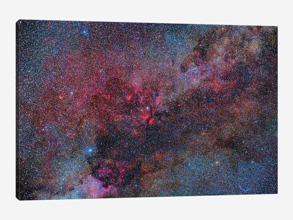 Part Of The Milky Way Constellation In Cygnus by Reinhold Wittich 1-piece Art Print
