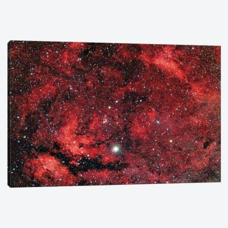 Sadr Region In The Constellation Cygnus I Canvas Print #TRK1293} by Reinhold Wittich Art Print