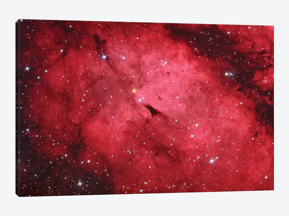 Sadr Region In The Constellation Cygnus II by Reinhold Wittich 1-piece Art Print