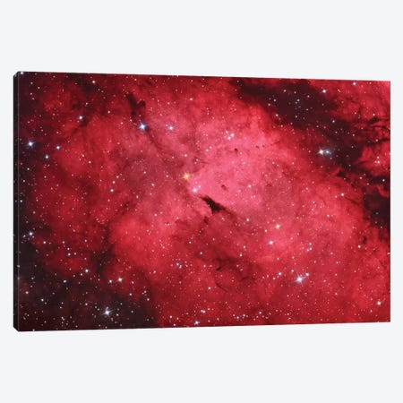 Sadr Region In The Constellation Cygnus II Canvas Print #TRK1294} by Reinhold Wittich Canvas Wall Art