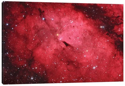 Sadr Region In The Constellation Cygnus II Canvas Art Print