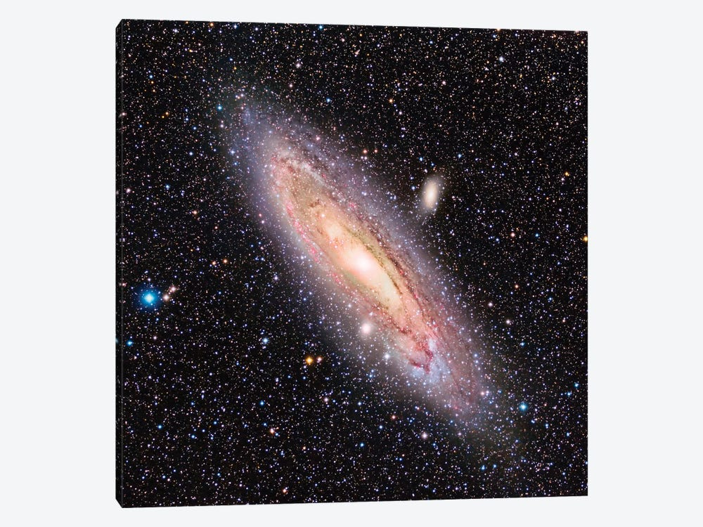 The Andromeda Galaxy (M31) by Reinhold Wittich 1-piece Canvas Artwork