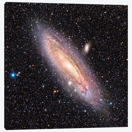 The Andromeda Galaxy (M31) Canvas Print #TRK1295} by Reinhold Wittich Canvas Wall Art