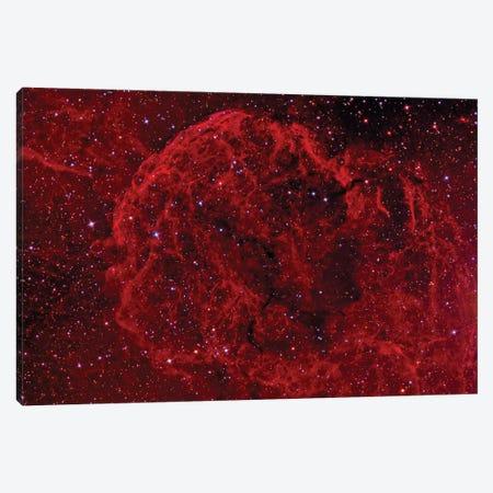 The Jellyfish Nebula (IC 443) Canvas Print #TRK1298} by Reinhold Wittich Canvas Print