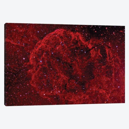 The Jellyfish Nebula (IC 443) Canvas Print #TRK1298} by Reinhold Wittich Canvas Print