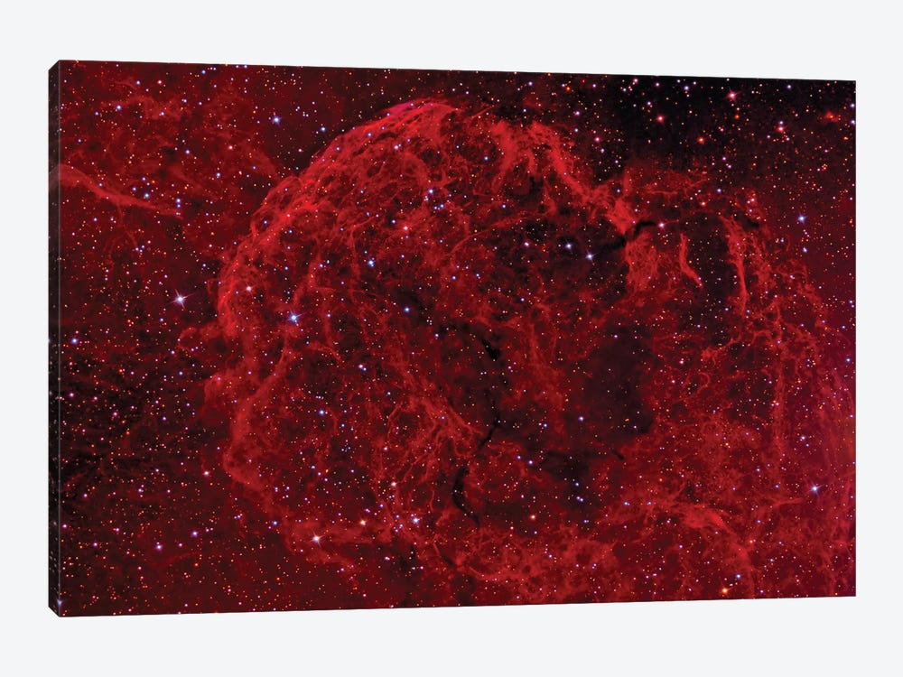The Jellyfish Nebula (IC 443) by Reinhold Wittich 1-piece Canvas Art Print