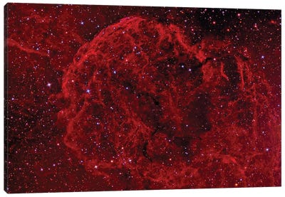 The Jellyfish Nebula (IC 443) Canvas Art Print