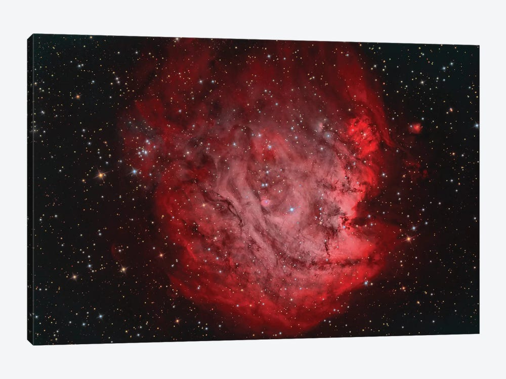 The Monkey Head Nebula (NGC 2174) With IC 2159 Nebulosity by Reinhold Wittich 1-piece Canvas Art