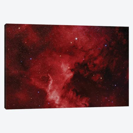 The North America Nebula (NGC 7000) Canvas Print #TRK1300} by Reinhold Wittich Art Print