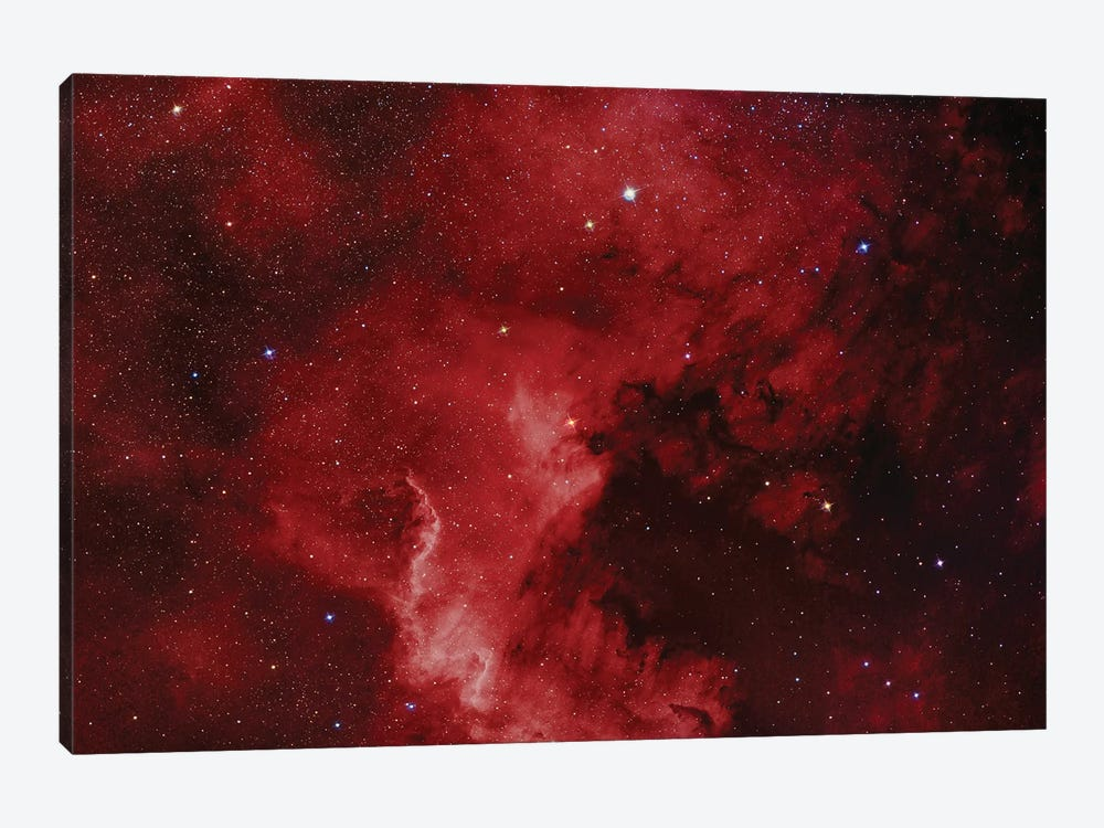 The North America Nebula (NGC 7000) by Reinhold Wittich 1-piece Art Print
