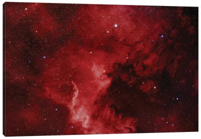 The North America Nebula (NGC 7000) Canvas Art Print