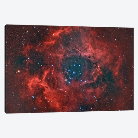 The Rosette Nebula Canvas Print #TRK1303} by Reinhold Wittich Art Print