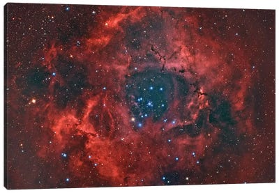 The Rosette Nebula Canvas Art Print