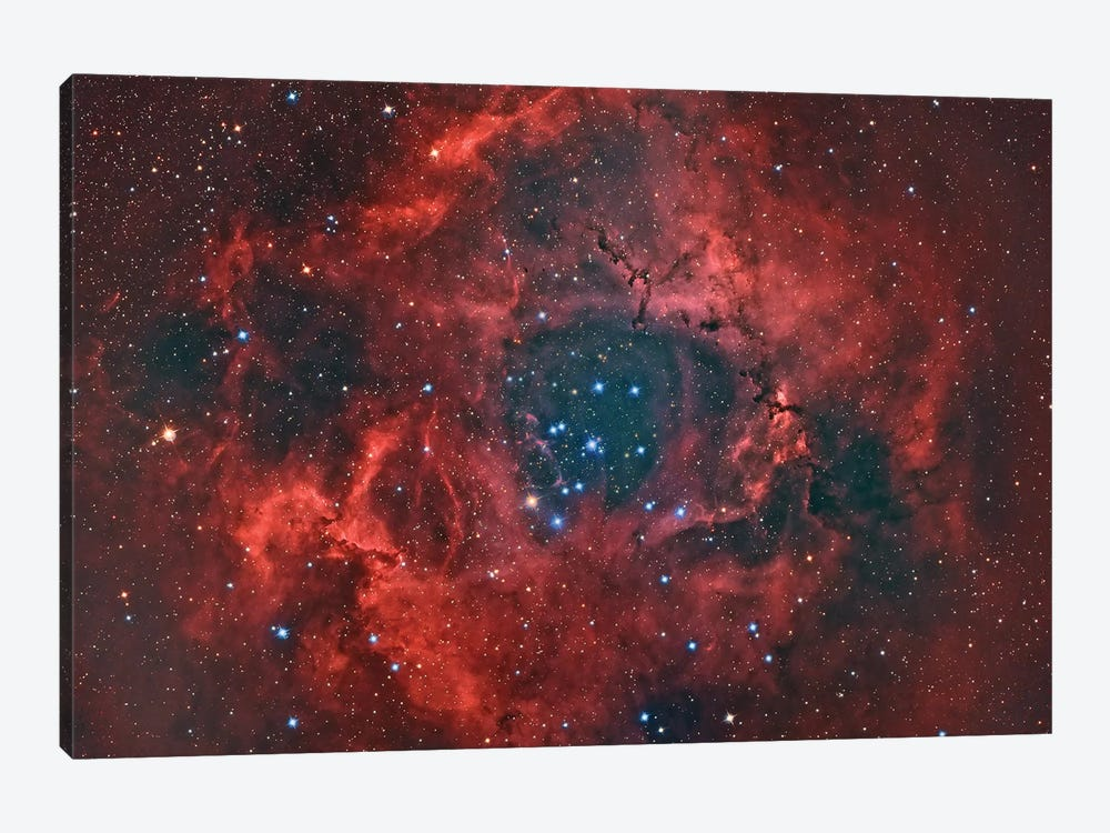 The Rosette Nebula by Reinhold Wittich 1-piece Canvas Art