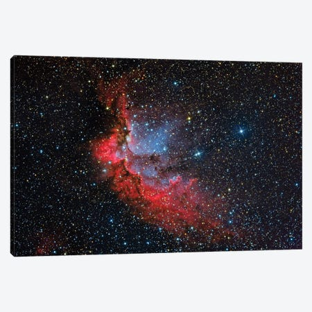 The Wizard Nebula (NGC 7380) Canvas Print #TRK1306} by Reinhold Wittich Canvas Art