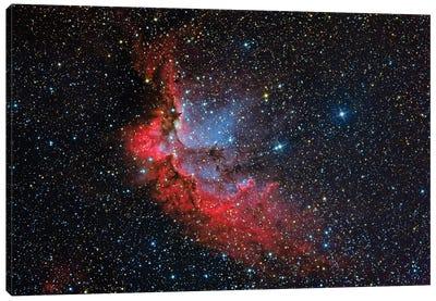 The Wizard Nebula (NGC 7380) Canvas Art Print