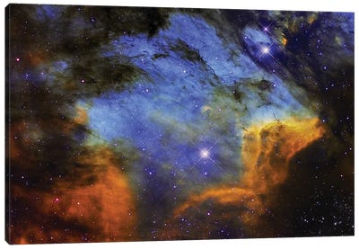 A Colorful Pelican Nebula In The Constellation Cygnus Canvas Art Print