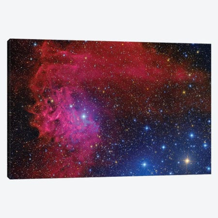 Flaming Star Nebula In The Constellation Auriga Canvas Print #TRK1323} by Roberto Colombari Canvas Print