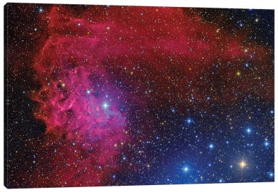 Flaming Star Nebula In The Constellation Auriga Canvas Art Print
