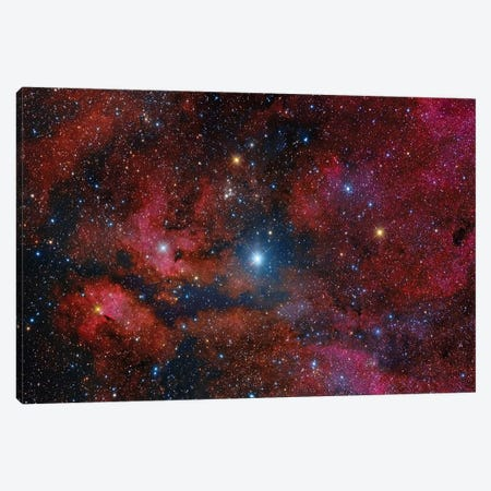 Gamma Cygni Star And Its Surroundings Canvas Print #TRK1324} by Roberto Colombari Canvas Artwork